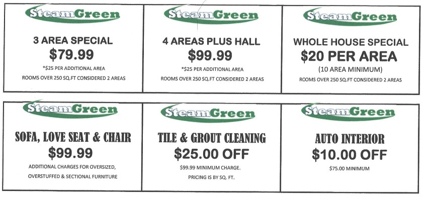 current specials steam green your greener steam cleaner steam green your greener steam cleaner. Black Bedroom Furniture Sets. Home Design Ideas
