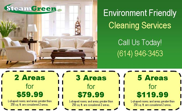 Current Specials Steam Green Your Greener Steam Cleaner